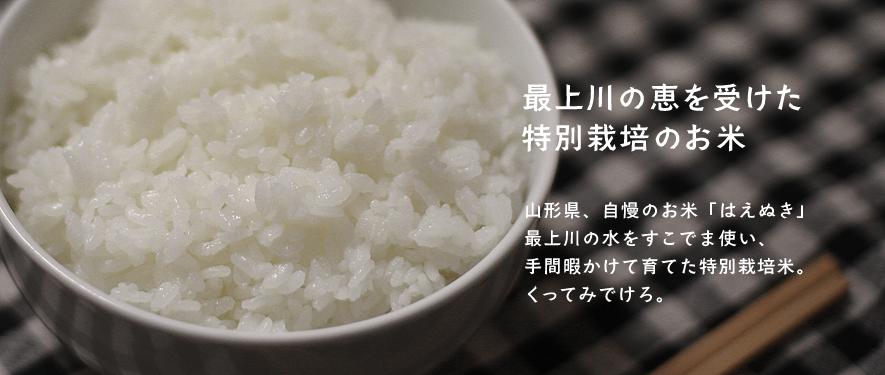 最上川の恵を受けた特別栽培のお米