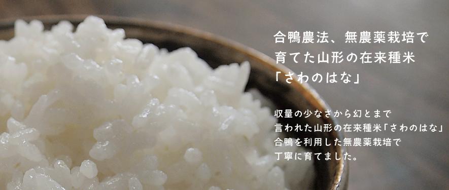 紙マルチ無農薬栽培で育てた山形の在来種米「さわのはな」収量の少なさから幻とまで言われた山形の在来種米「さわのはな」紙マルチを利用した無農薬栽培で丁寧に育てました。